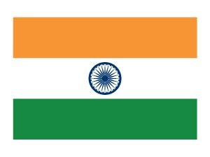 Indian Flag Temporary Tattoo