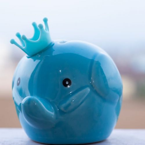 Elephant Return Gift - Coin Bank