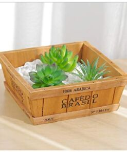 wooden succulent tray